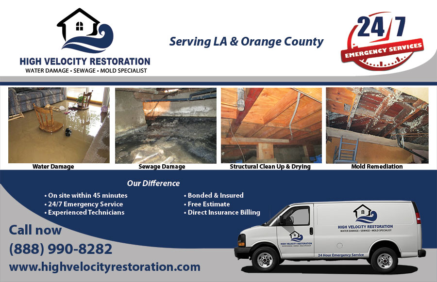 High Velocity Restoration - Water Damage, Sewage and Mold Specialist